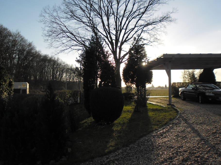Ein-und Ausfahrt mit Carport