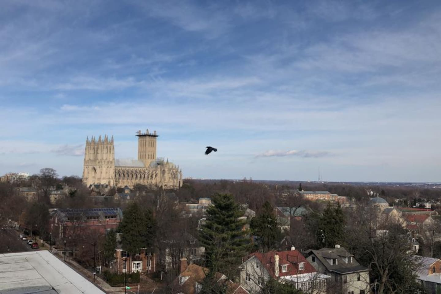 View of the National Cathedral from the rooftop!