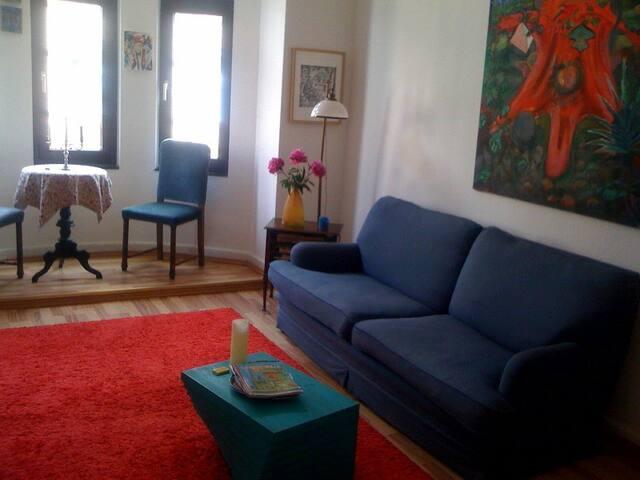 Geraeumiges Wohnzimmer mit Schlafmoeglichkeit auf bequemer Couch.