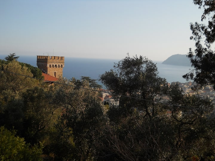 ALASSIO- SPLENDIDA VILLA IN COLLINA