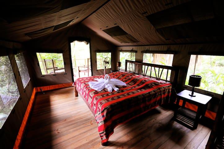 Safari Tent Bungalow in the Jungle