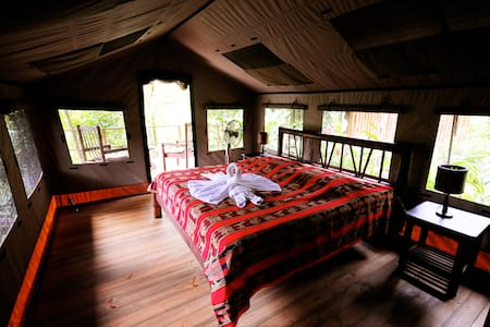 Safari Tent Bungalow in the Jungle - Telt