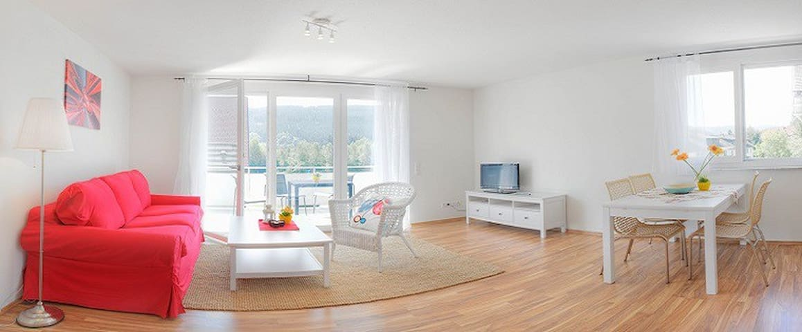 braviscasa-FeWo Titisee,max 4 Pers. L12 - Titisee-Neustadt - Apartment