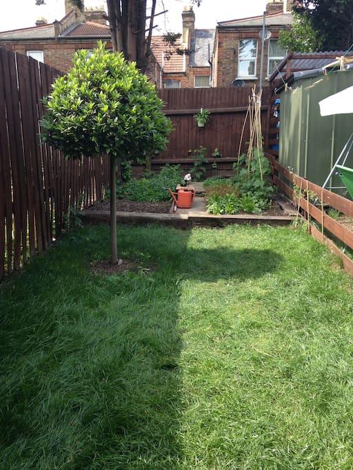 Our little garden!