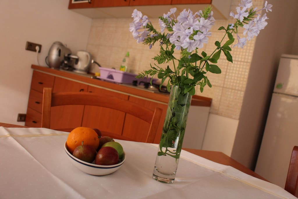 Lovely kitchen fully equipped with the fridge and microwave leading to the terrace