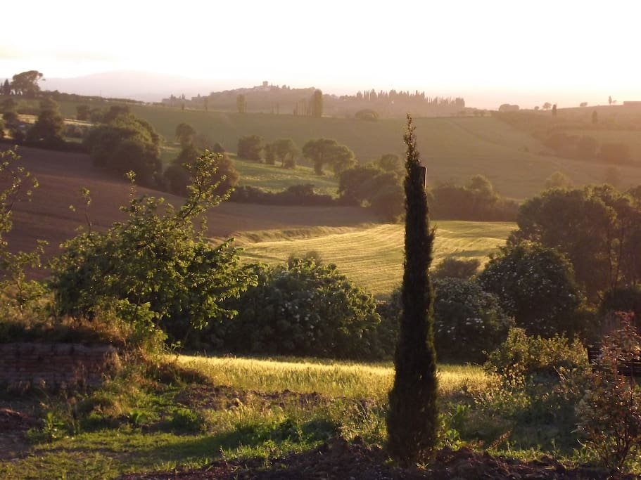 Our Panorama Tuscany