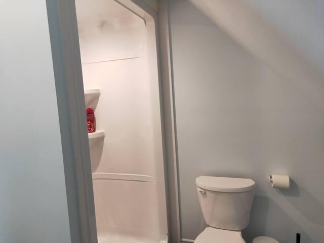 Full-piece bathroom 2 (lower level)