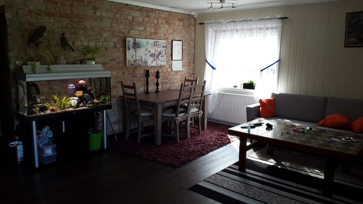 Quite newly renovated apartment