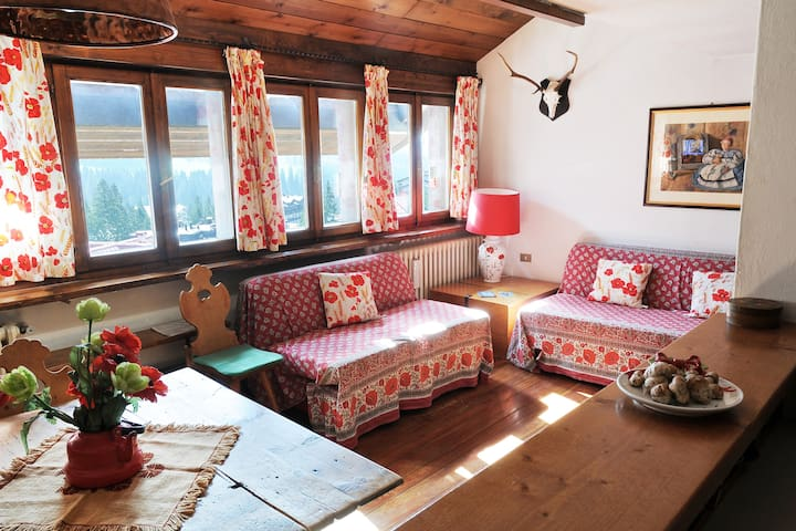 ★ Best mountain view of Dolomiti ★ - San Martino di Castrozza - Apartment