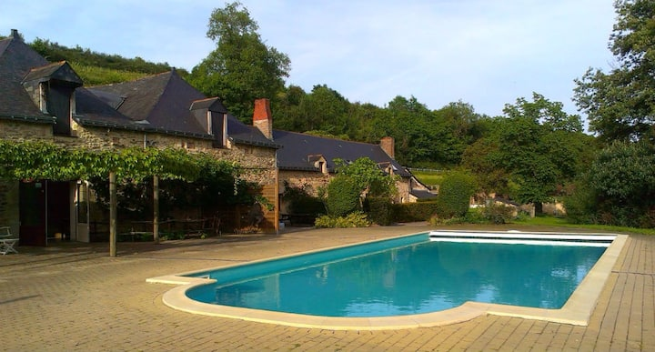 Gîte 'Bourgueil' and pool on the Anjou wine route