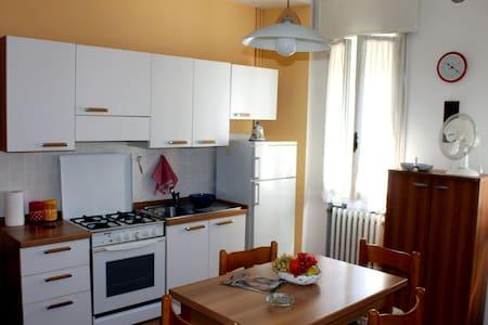 Appartamentino Soleggiato sul corso - Rovigo