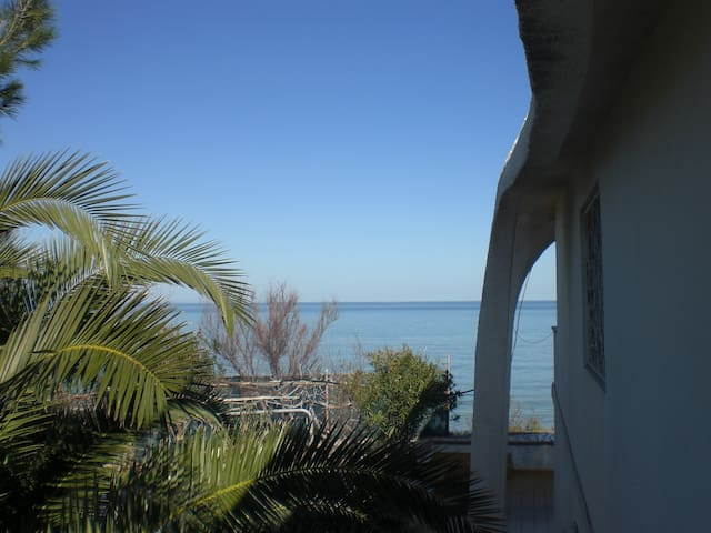 GARGANO  -  VILLA  ON  THE  SEA