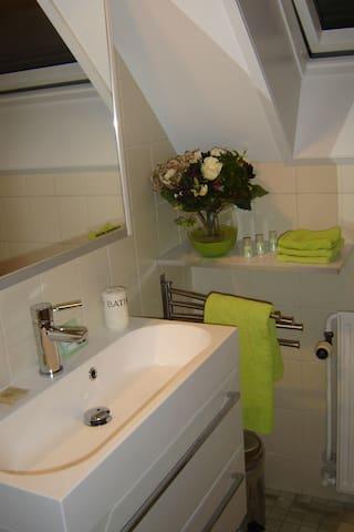 badkamer met meubel en douche, föhn aanwezig