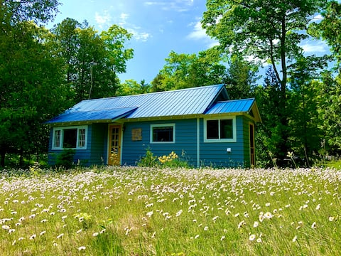 *(NEW)* Entire 1930's Cabin, dance with nature....