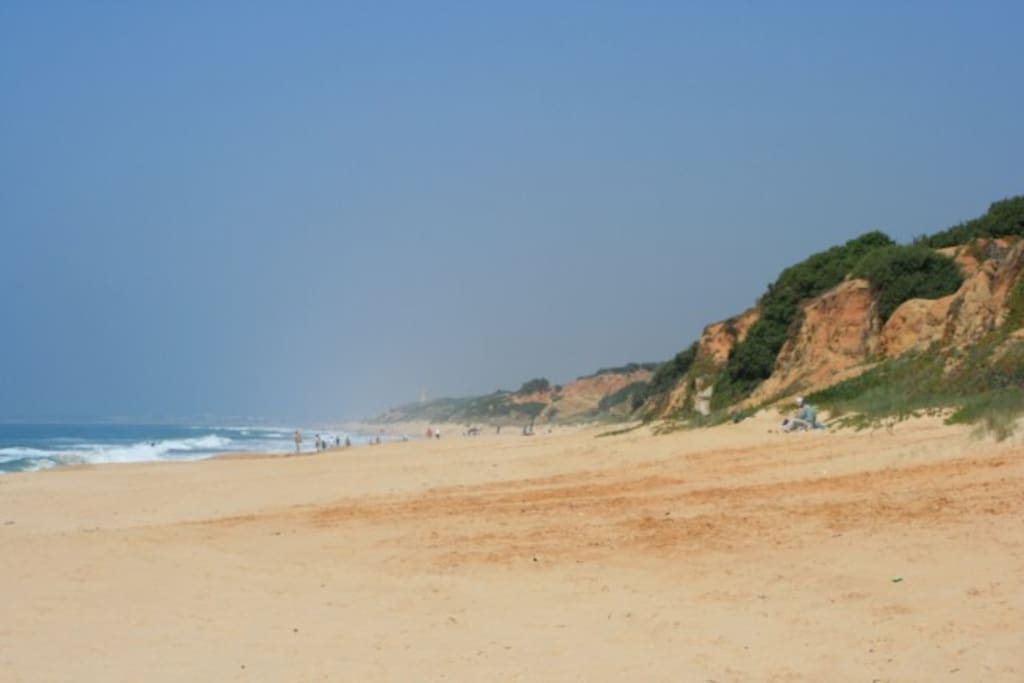 Vista de la playa de Roche