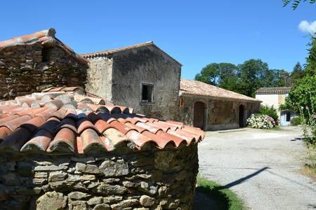 Domaine de Massillargues - Saissac - Haus