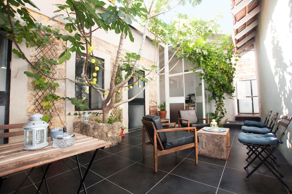 Patio and his charming fig tree (30m²)