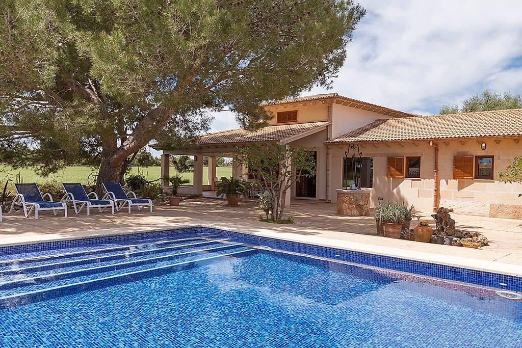 la piscina y fachada de casa con un enorme pino que aporta sombra