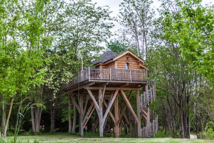 Château dans les arbres - Le Nizan - Treehouse