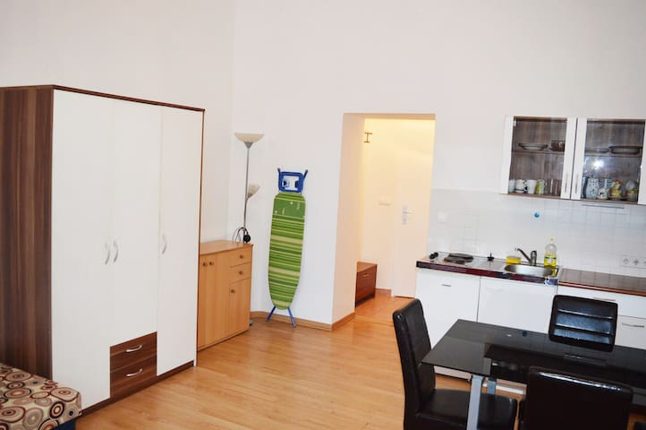 1Room-Apartment in Central Vienna, Groundfloor