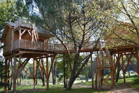 Cabane dans les arbres Palombière - Le Nizan