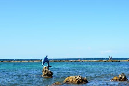 Appartamento   Golfo dell'Asinara - Porto Torres