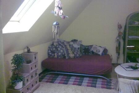 podkrovní místnost - Břvany