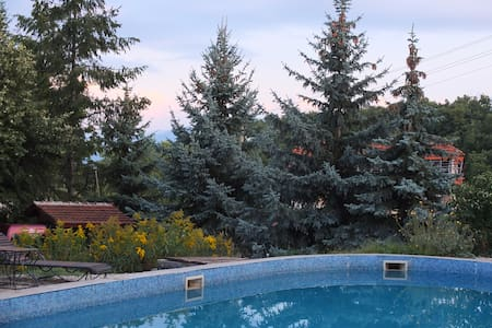 SPA near Sofia and Borovets. Wi-fi! - Pchelin - Apartment