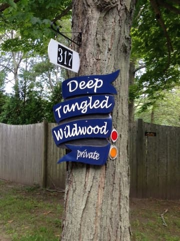 Deep Tangled Wildwood Cottage - Scituate
