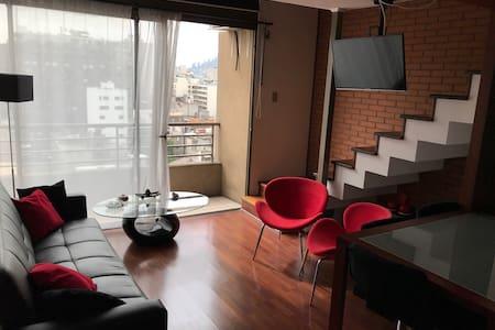 Dpto Loft Santiago Centro (Lastarria/Bellas Artes) - Santiago - Wohnung