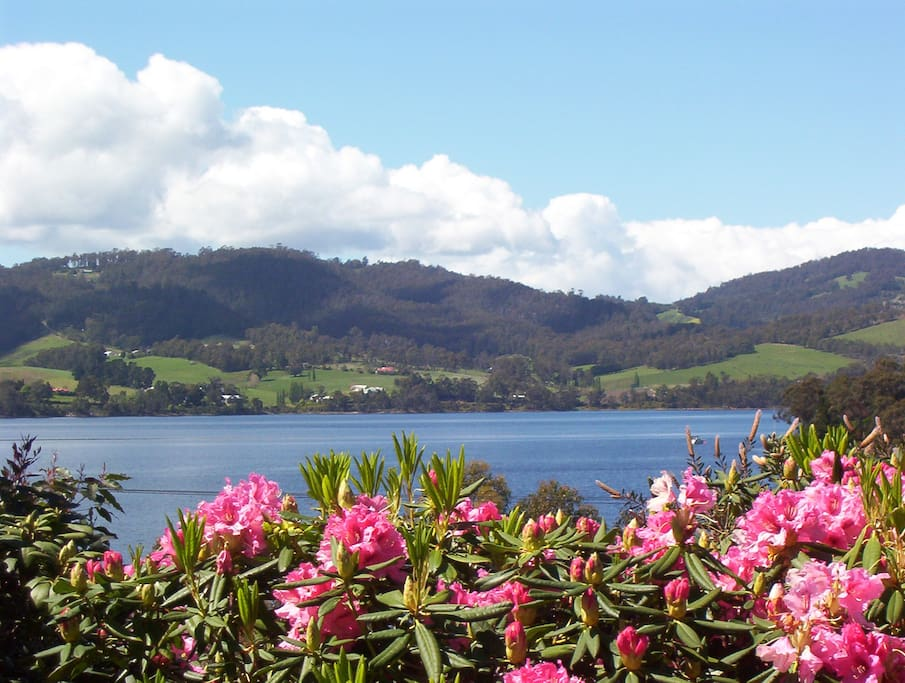 View of the Huon River
