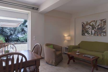 Spacious seafront villa sleeps 2/4 - Marathopoli