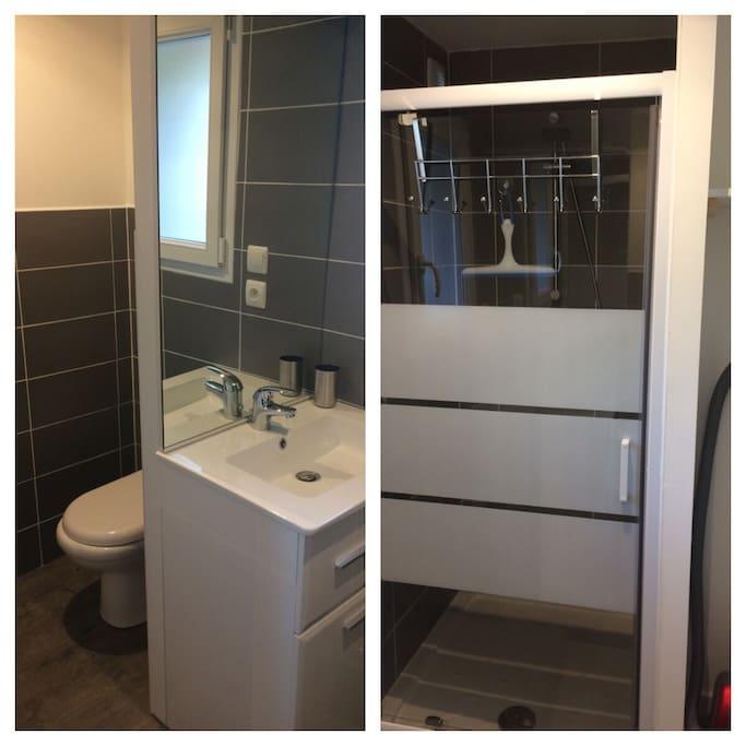 Pièce du rez de chaussée, wc et salle de bain avec douche et vasque.