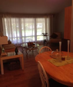 Wi-fi, near Hospitals, Downtown, Washington Park! - Springfield - Casa