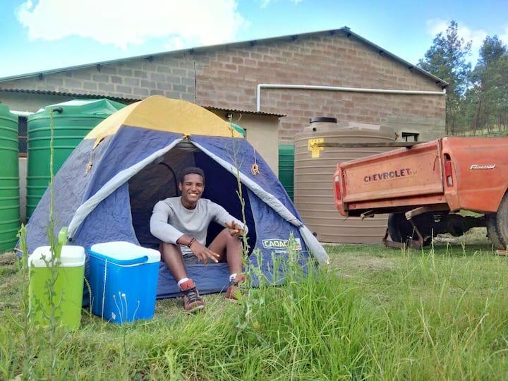 Taaiboskraal campsite