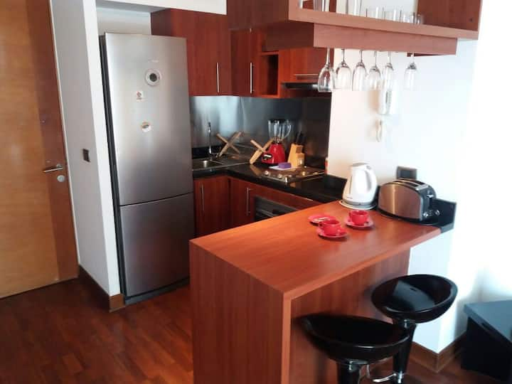 Moderno departamento 1 dormitorio Providencia