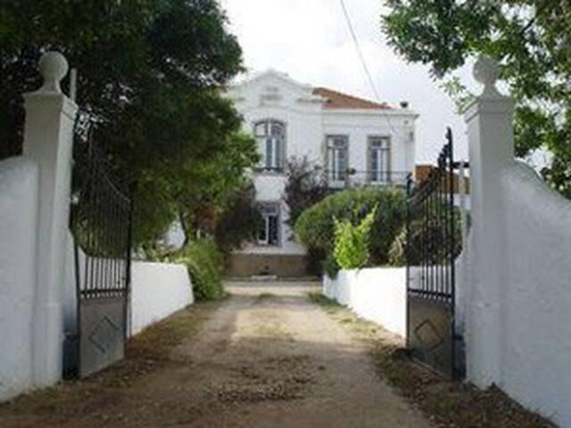 Casa Grande / Turquoise Room