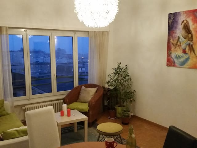 Nice spacious room in the city center - Lausanne - Huoneisto