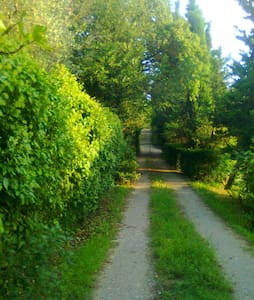 antico casale nella verde Toscana - Arezzo - Villa