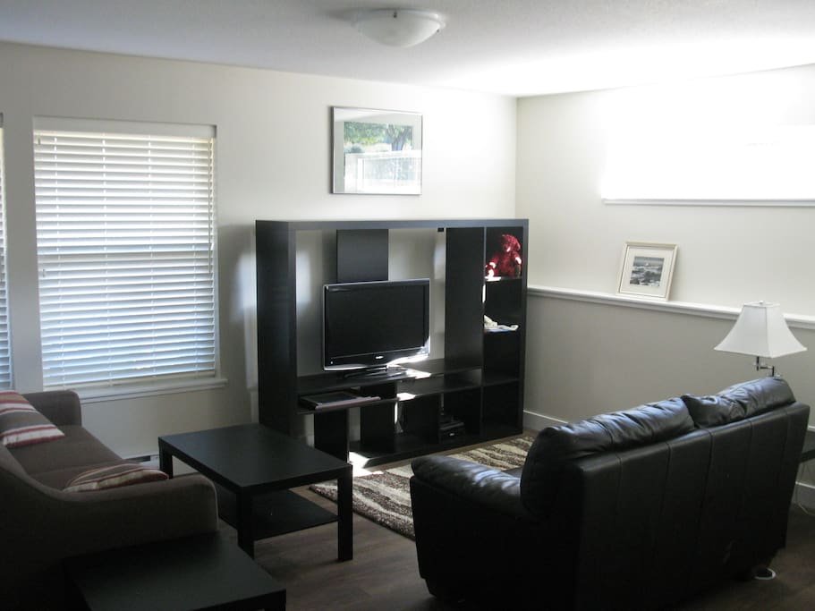 Cozy seating area with pullout sofa and loveseat, TV, wall unit, games, books