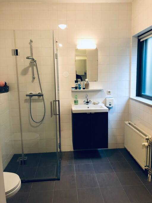 private bathroom with toilet and shower. Cupboard for towels and toiletries. Fohn.