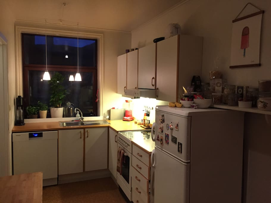 Fully equipped kitchen including dishwasher and sparkling water maker