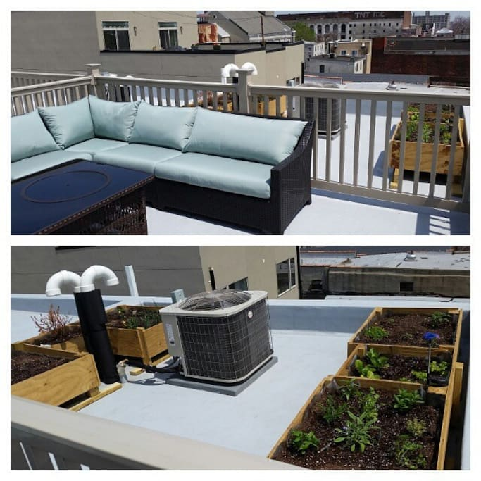 Roof deck with patio, and garden in the rare