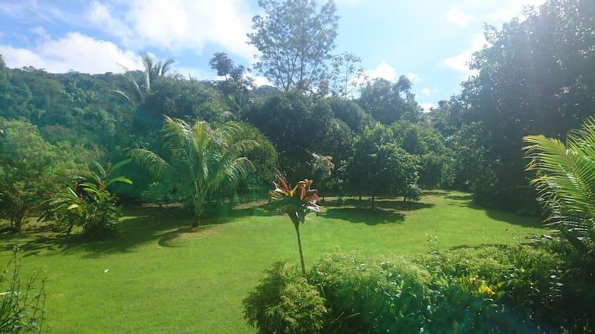 Austeigen im Einklang mit der Natur Costa Ricas