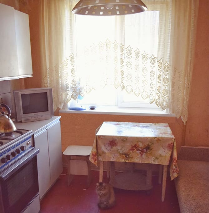 В вашем распоряжении просторная кухня с плитой,СВЧ-печью, холодильником и диваном