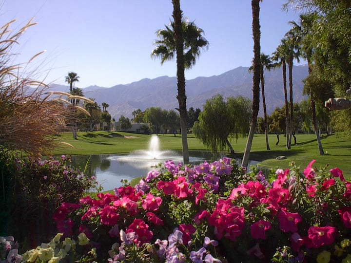 Best Value in Palm Springs
