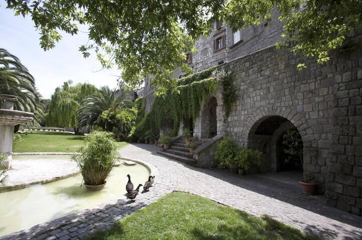 Resort nel centro di Viterbo - Viterbo - Apartment