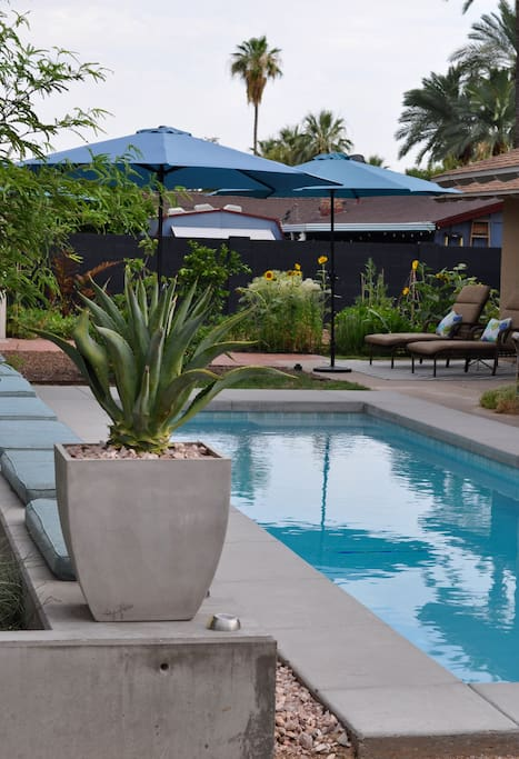 Take a dip in the pool and enjoy the Phoenix sunshine.