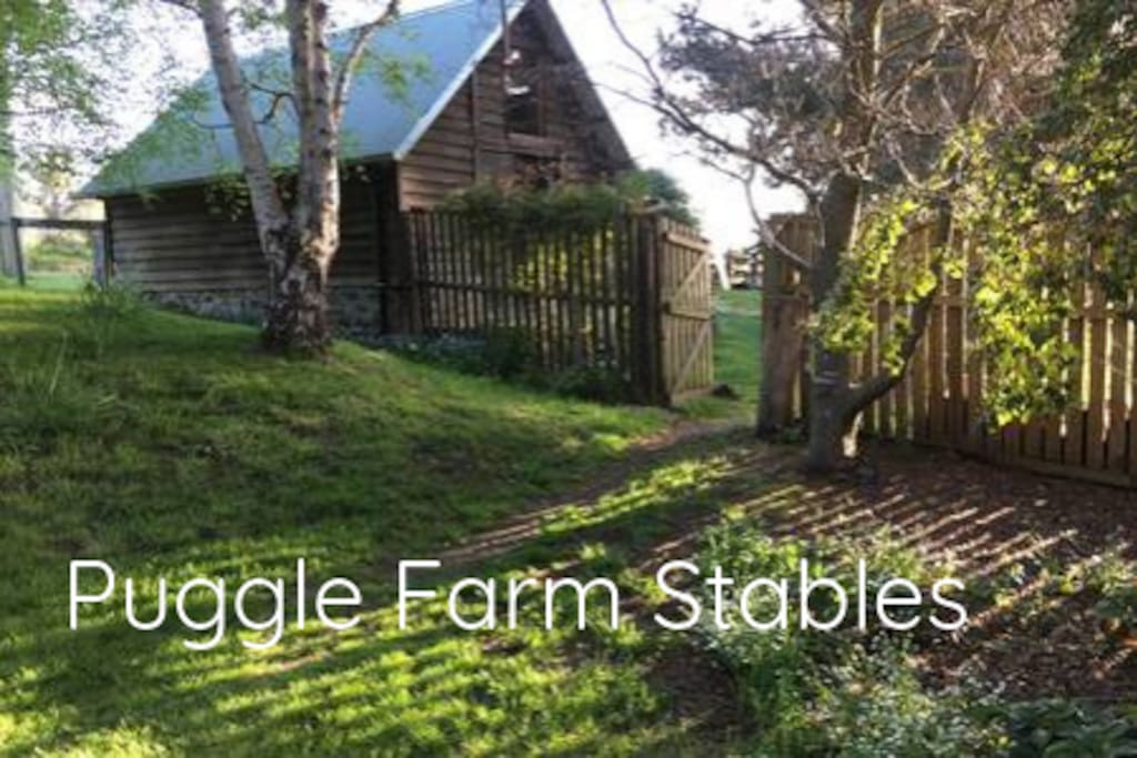 Puggle Farm Stables