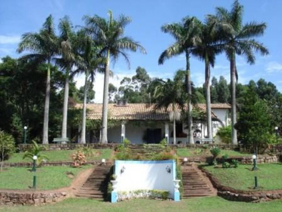Vista da frente com palmeiras imperiais.